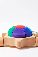 Grimm's Rainbow Turtle