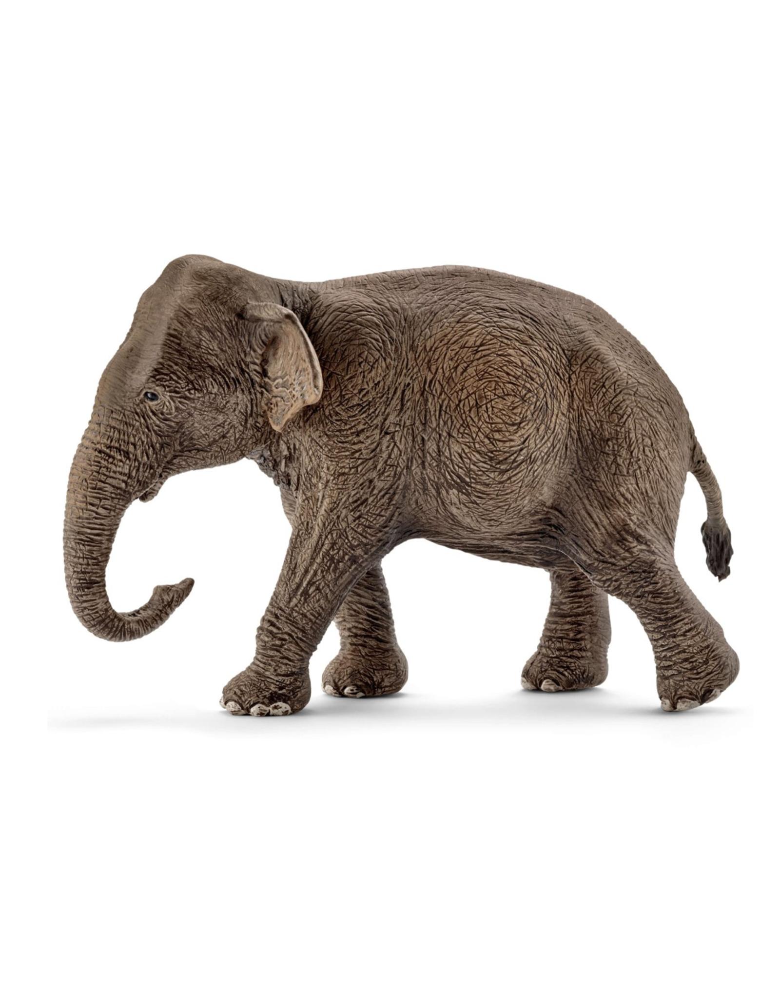 Schleich Asian elephant, female
