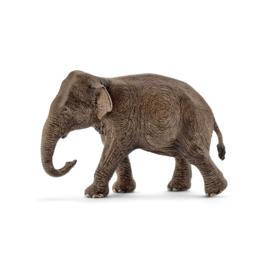 Schleich Eléphant d'Asie, femelle