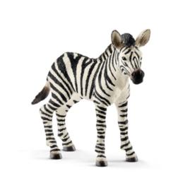 Schleich Baby Zebra