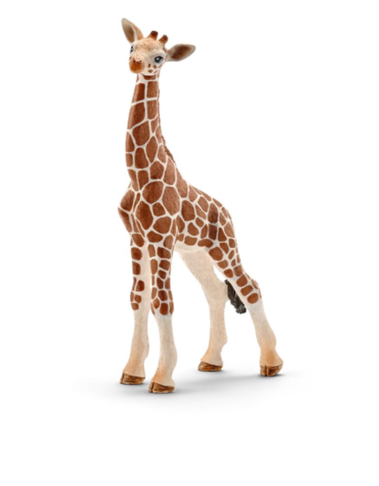 Schleich Bébé girafe