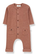 1+ in the family Hudson Jumpsuit