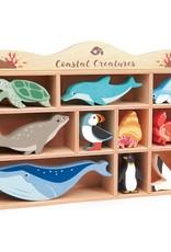 Tender leaf toys Coastal Creatures