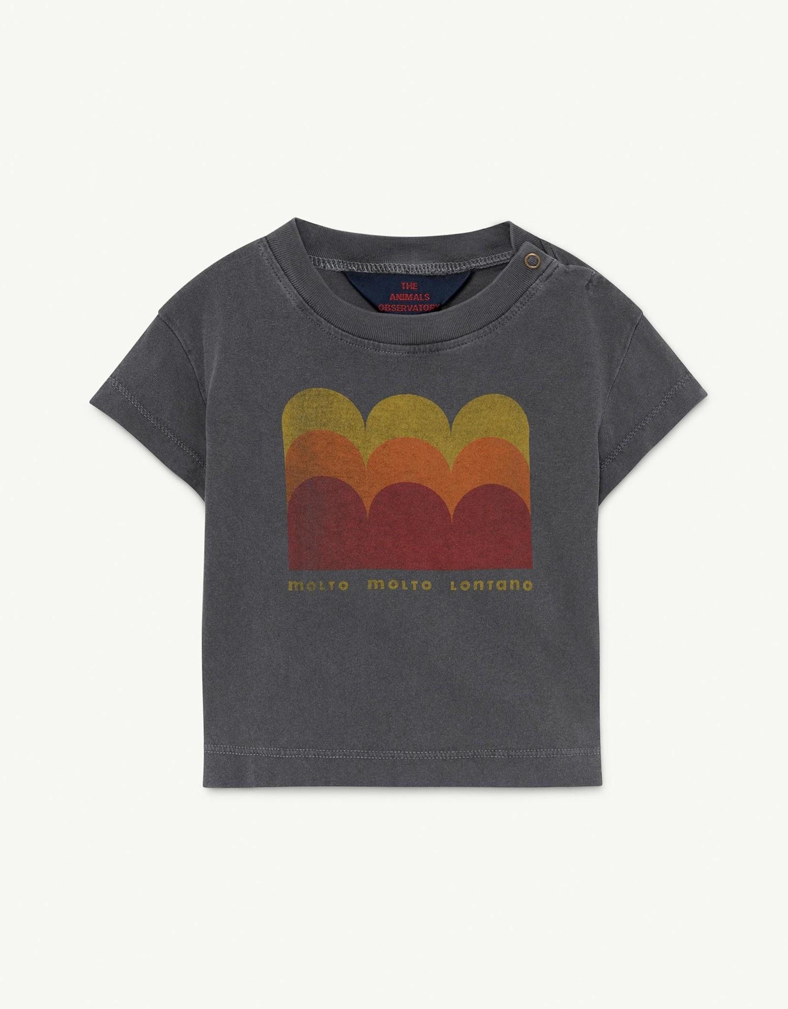 The Animal Observatory  T-shirt Rooster pour bébé