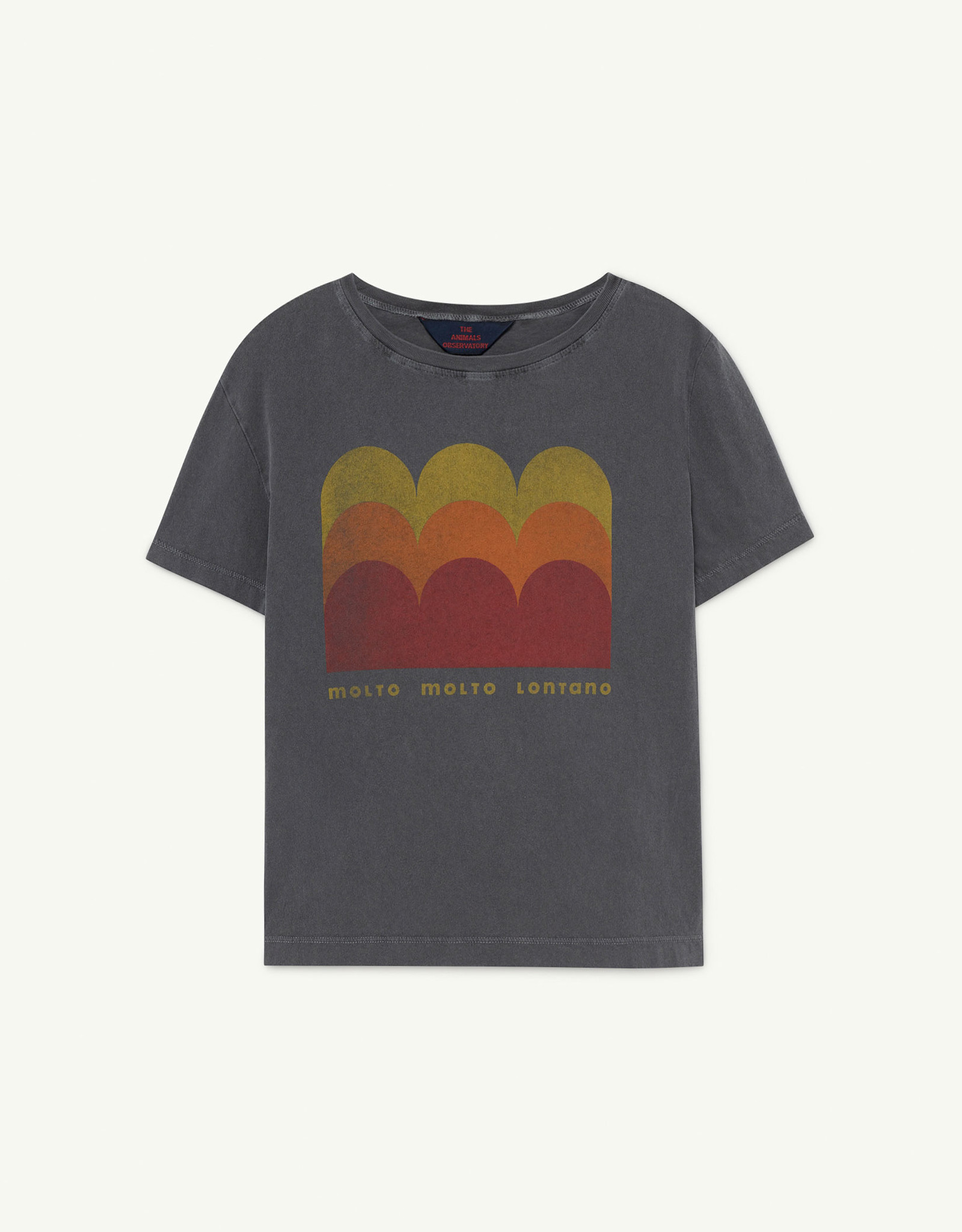 The Animal Observatory Rooster Kids T-shirt