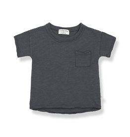 1+ in the family T-shirt Nani
