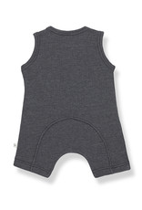 1+ in the family August Romper