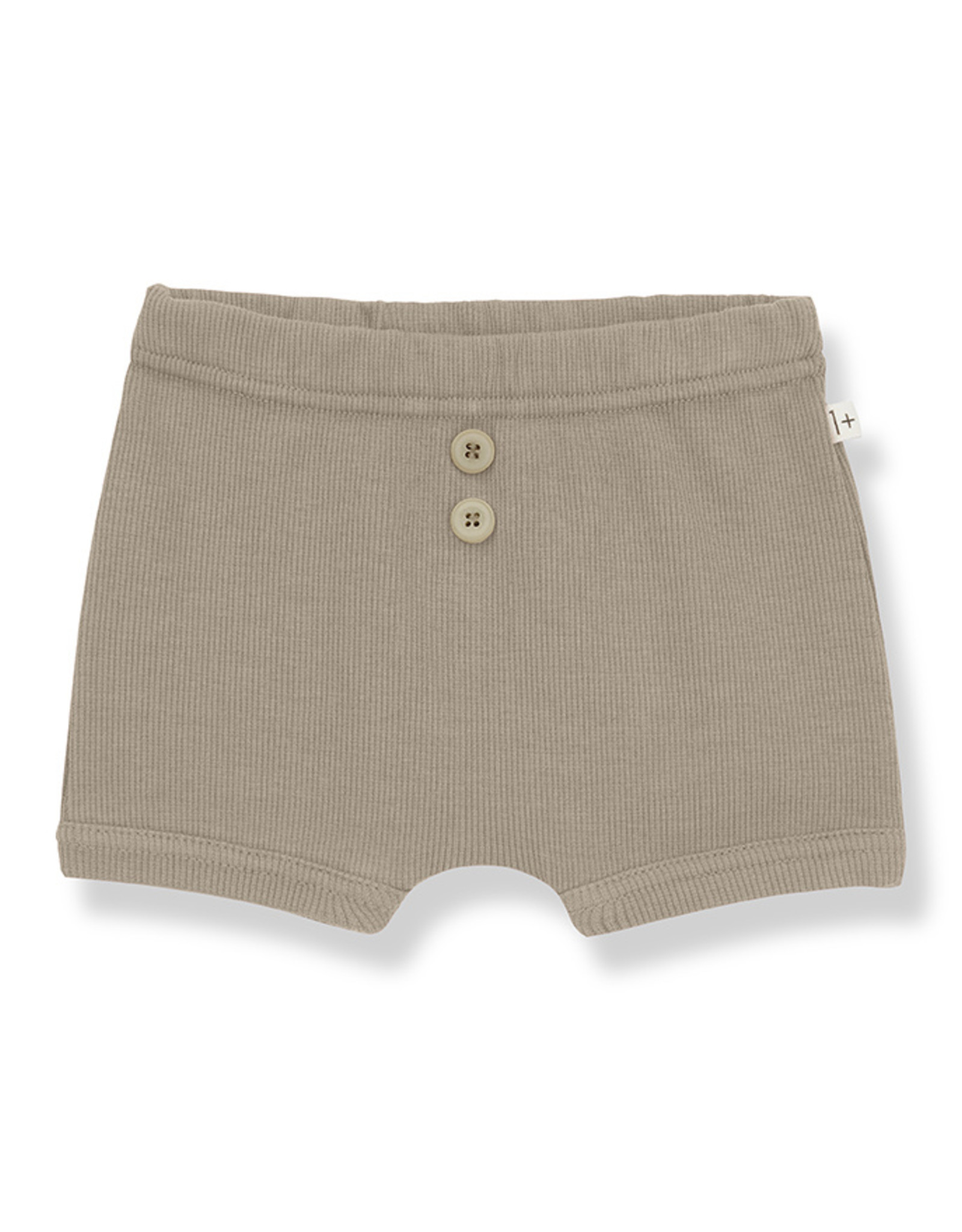 1+ in the family Sebastian Culotte