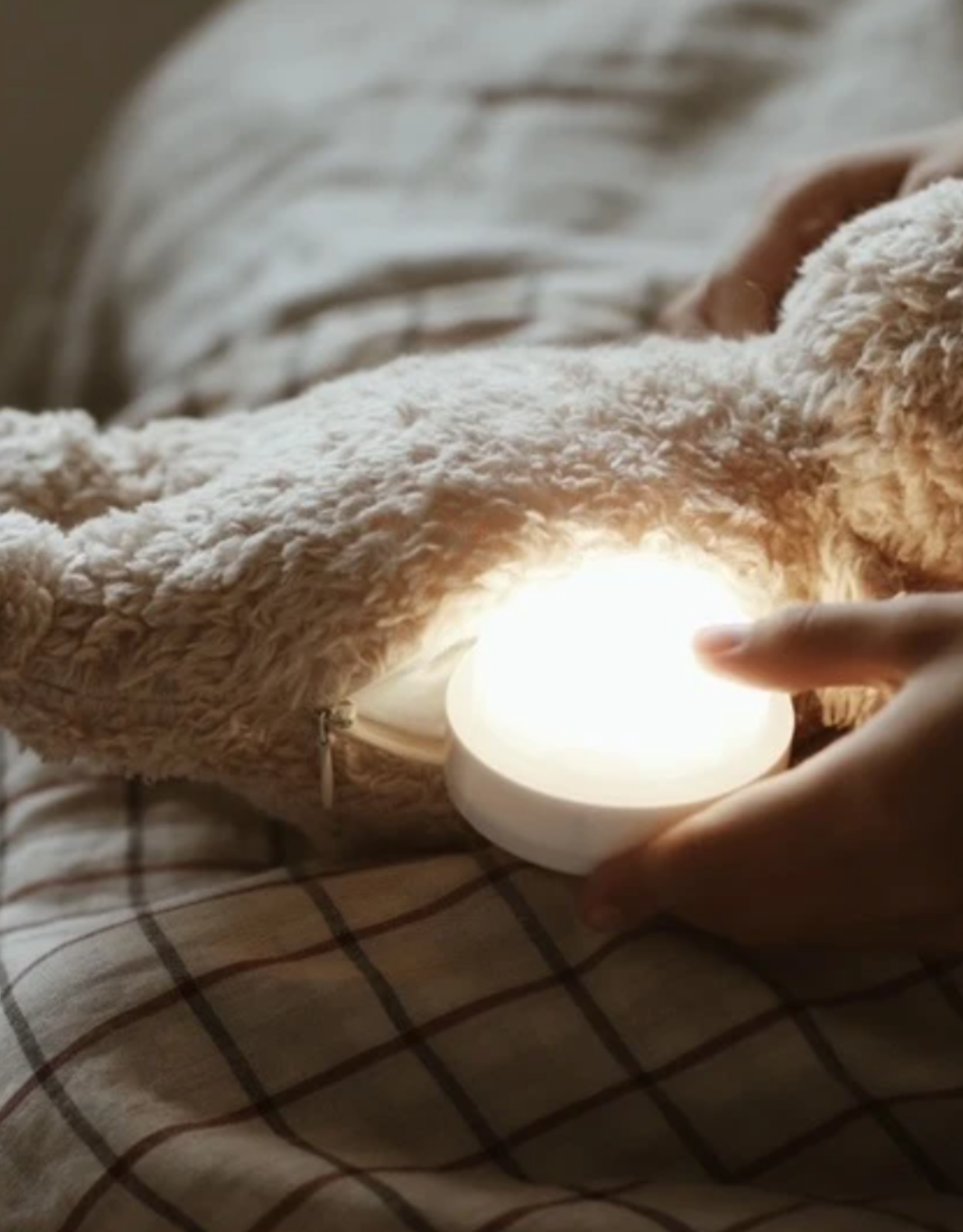 Moonie Organic Humming Bear with a lamp