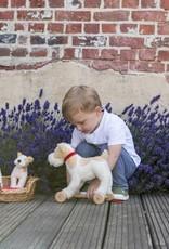 Egmont Eliot the dog (Small)
