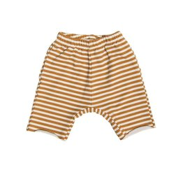 Athletic Short, golden stripes