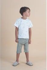 T-shirt, Eucaplyptus