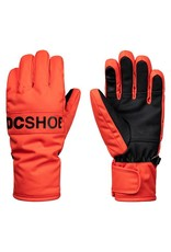 DC Shoes DC Youth Franchise Ski/Board Gloves
