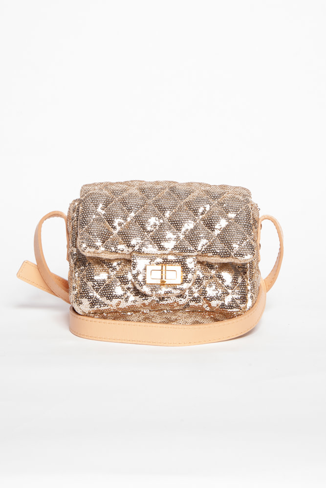 Chanel SMALL CHAMPAGNE SEQUIN & LEATHER CROSS BODY BAG