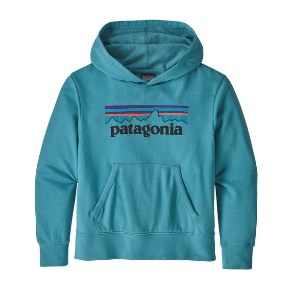 Patagonia Patagonia Kids Lightweight Graphic Hoody Sweatshirt