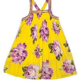 Ujala Dress
