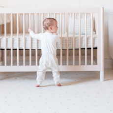 Pehr Designs Pehr Organic Baby Harem Pant - Size: 3-6 Mo