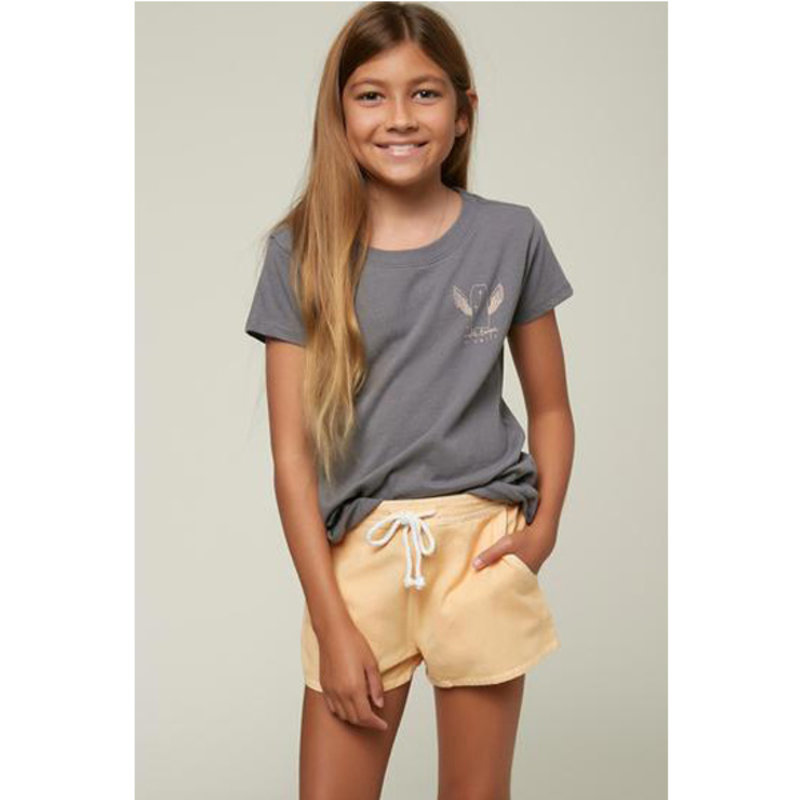 O'Neill O'Neill Toddler Sage Shorts