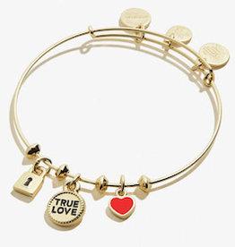 ALEX AND ANI Charm Bangle Trio 'True Love' Shiny Gold