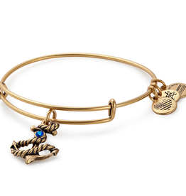 ALEX AND ANI Charm Bangle Anchor III in Gold
