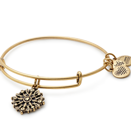 ALEX AND ANI Charm Bangle COMPASS III in Gold