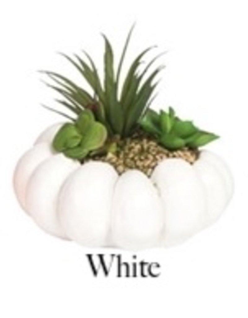 Medium Resin Pumpkin w/Succulents