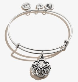 ALEX AND ANI Charm Bangle Path of Life IV in Silver