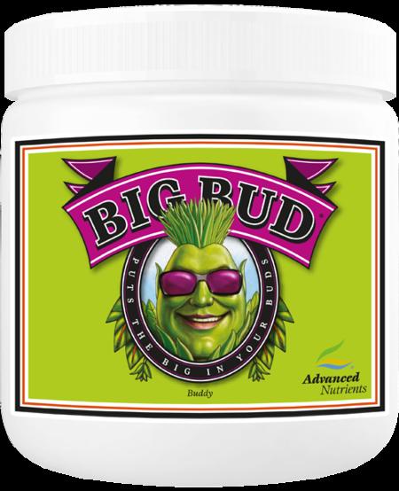 Big Bud Powder