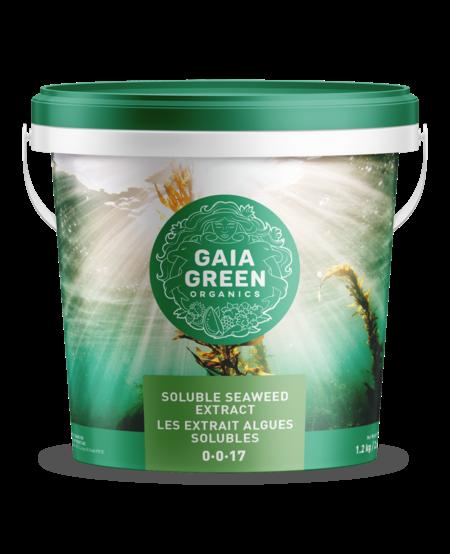 Soluble Seaweed Extract