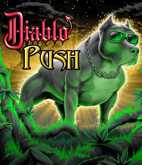 Diablo Nutrients Diablo Nutrients - Push