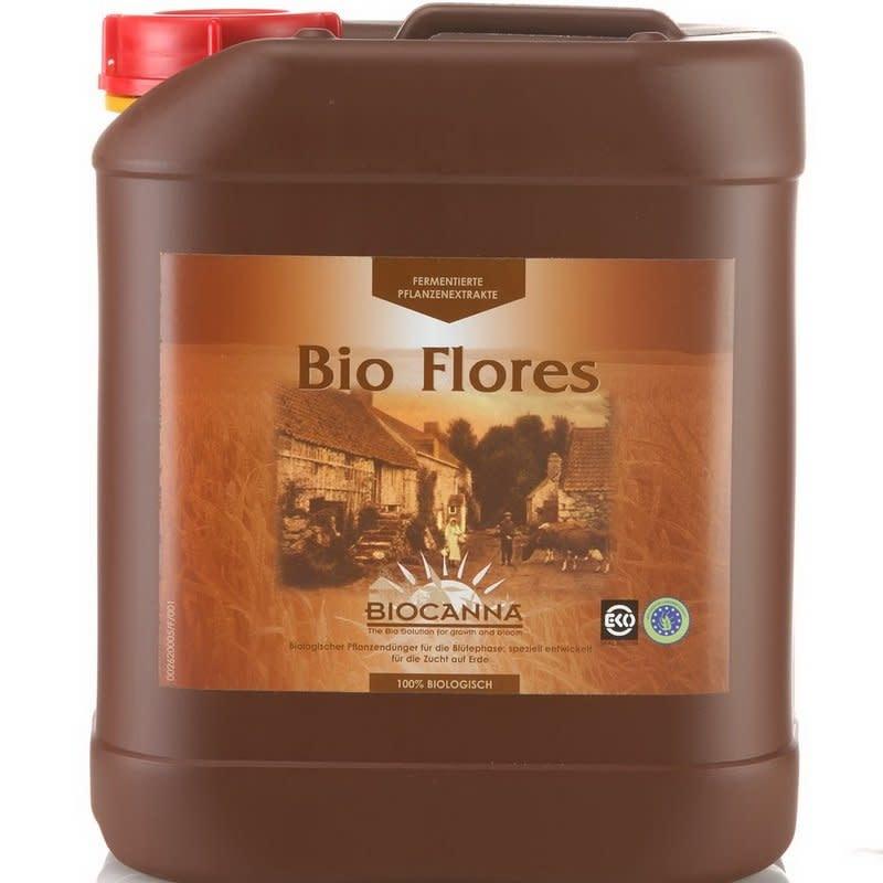 Canna Canna - Bio Flores