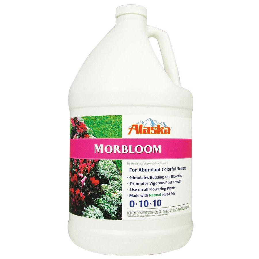 Alaska - Morbloom