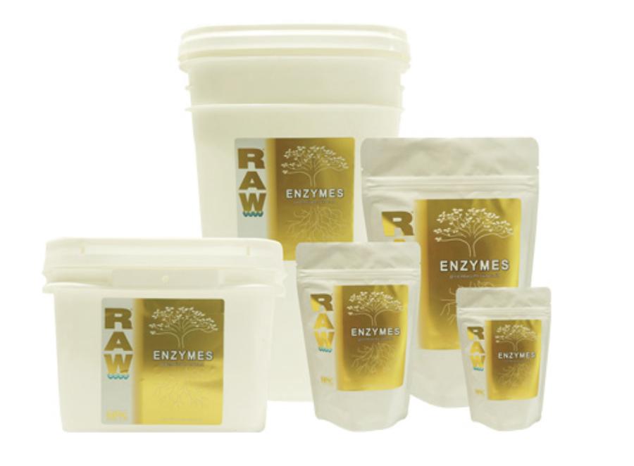 Raw - Enzymes