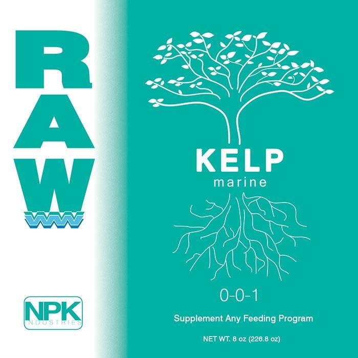 Raw - Kelp
