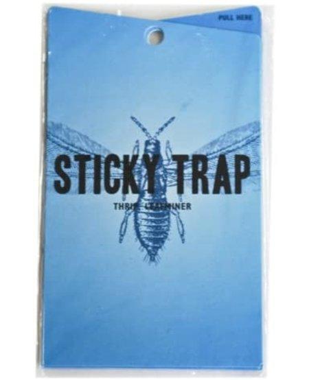 Blue Sticky Trap (5 Pack)