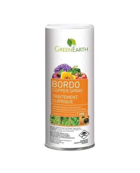 Bordo Copper Spray 200G
