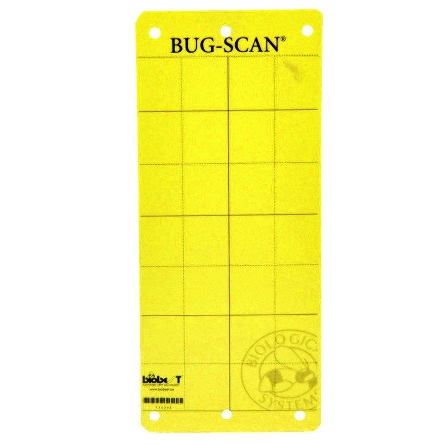 Biobest- Bug-Scan Yellow Sticky Trap (10 Pack)