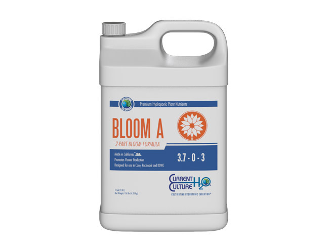 Current Culture H2O Current Culture H2O - Cultured Solutions Bloom