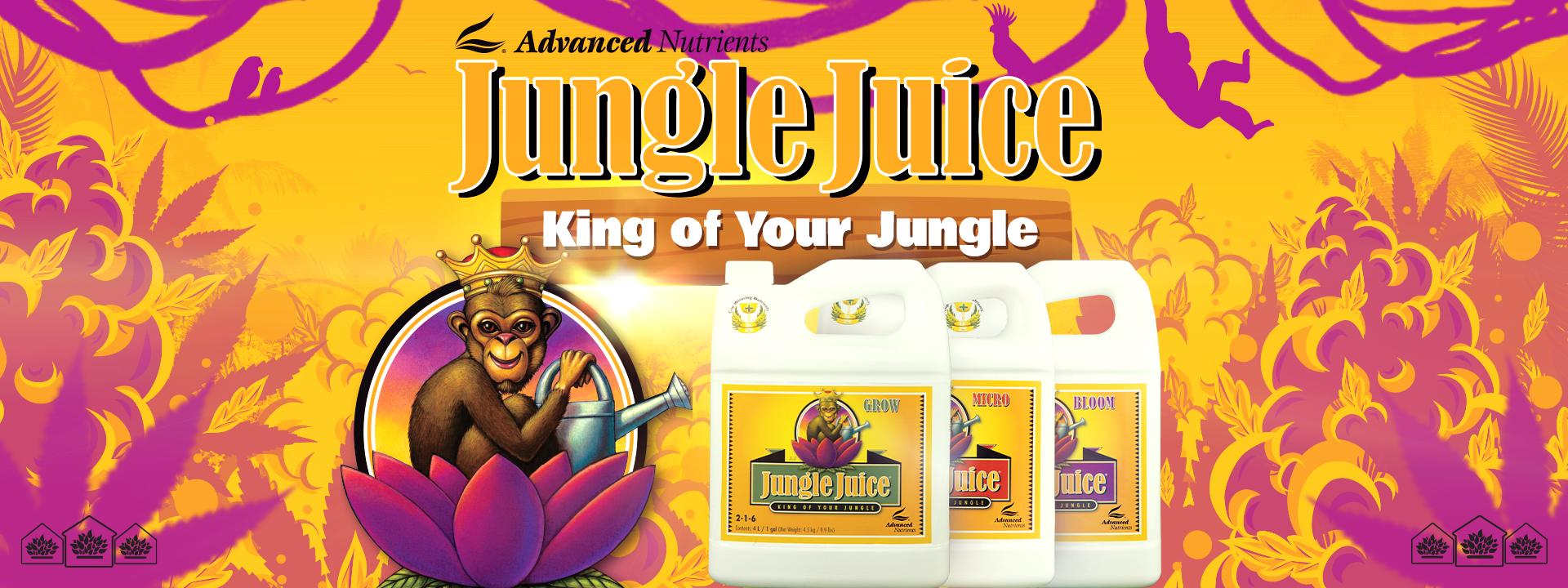 Jungle Juice 1920x720