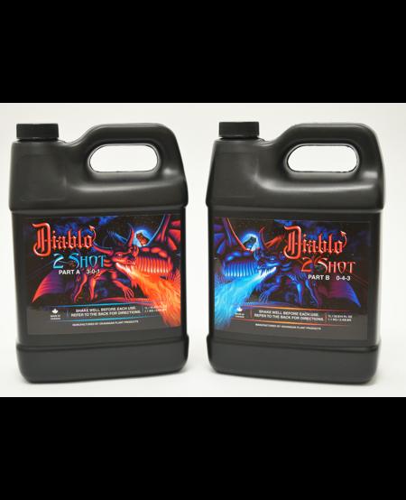 Diablo 2 Shot