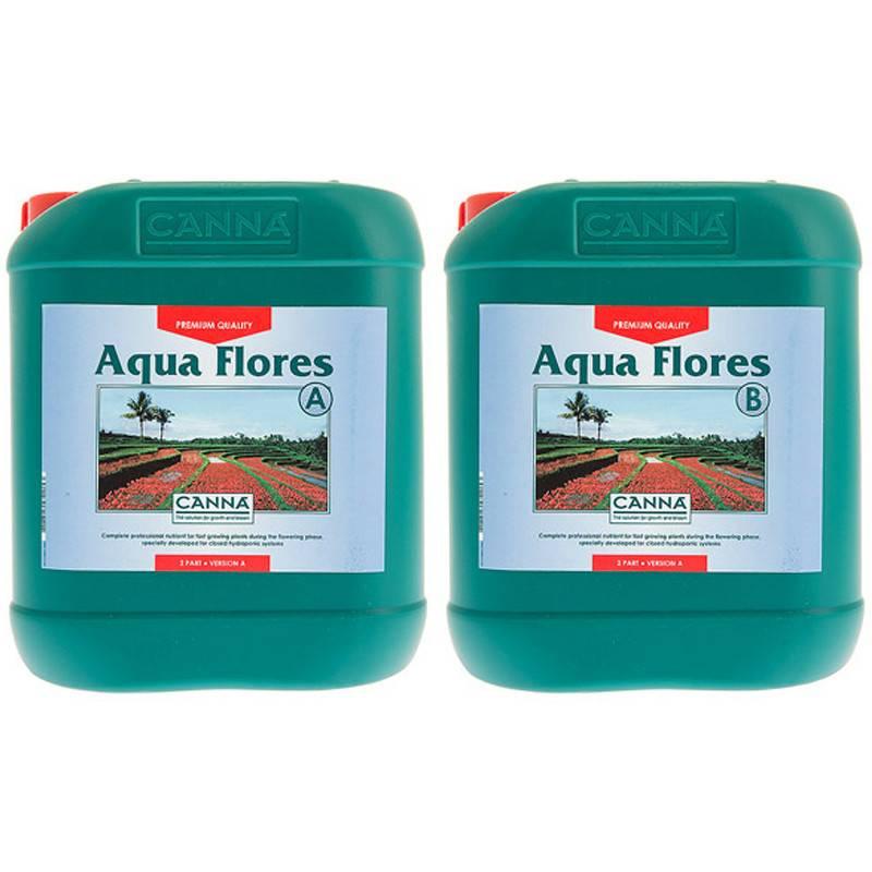 Canna Canna - Aqua Flores