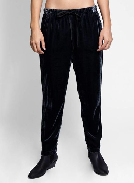 Xirena Dash Velvet Pant Grayson