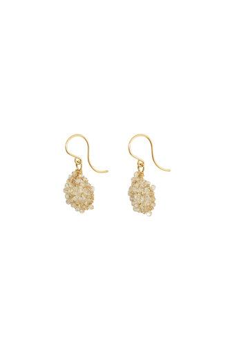 Dana Kellin Fashion Crystal and Gold Earrings