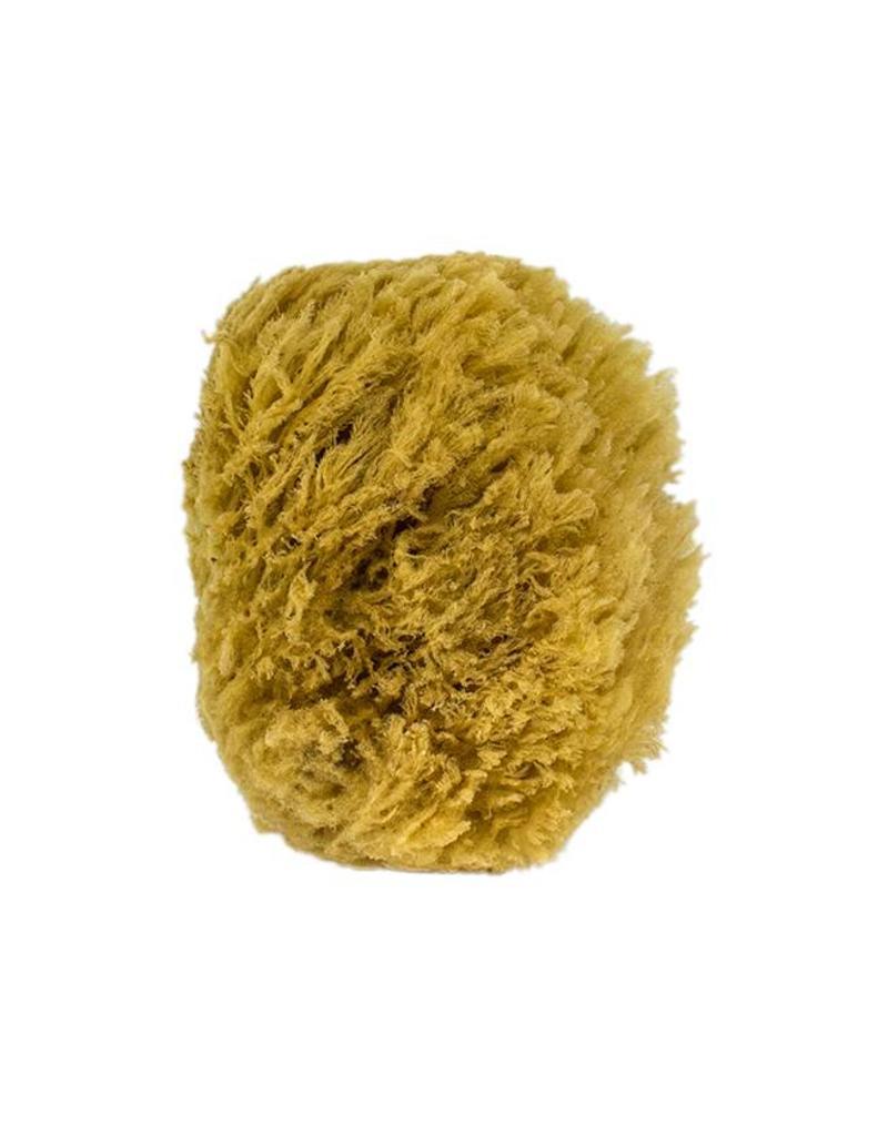 The All-Natural Sea Sponge