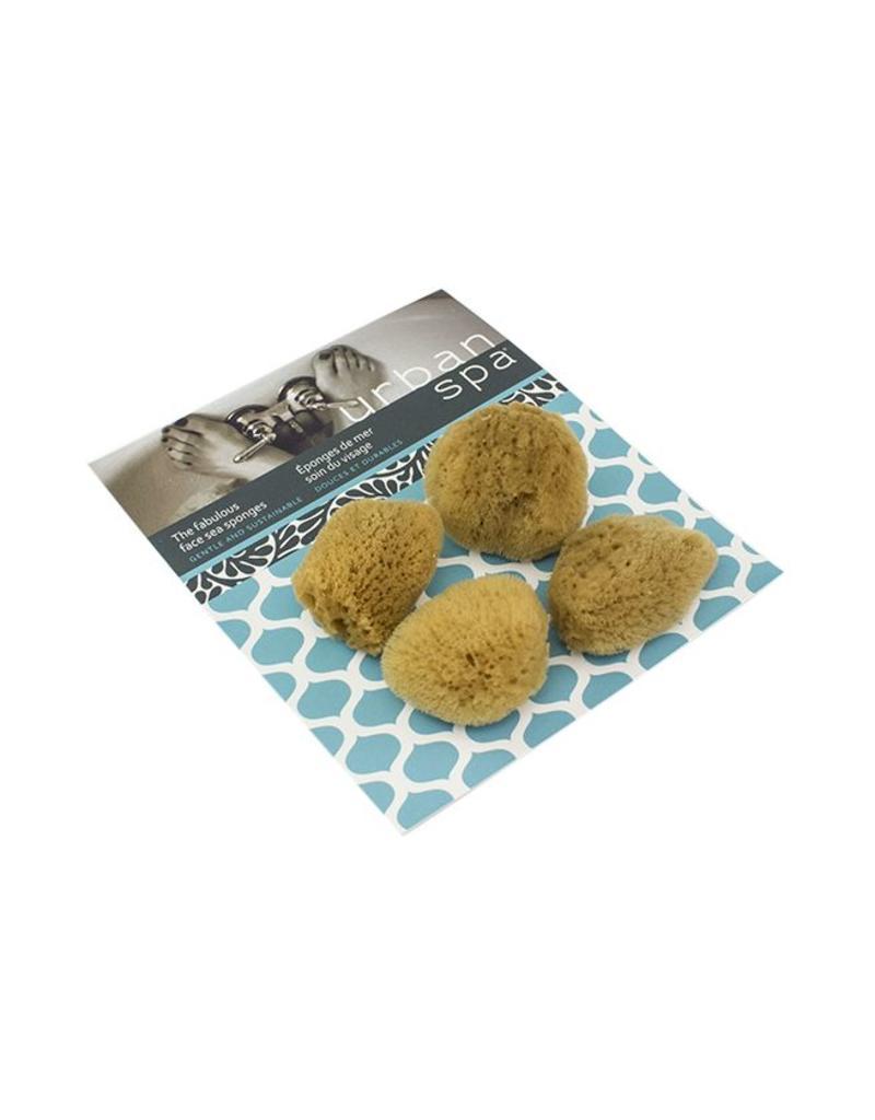 The Fabulous Face Sea Sponge