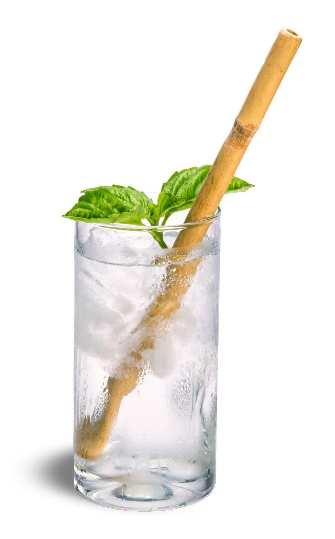 Bamboo Drinking Straw Garden City Essentials