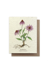 The Bower Studio Echinacea Plantable Seed Paper Greeting Card