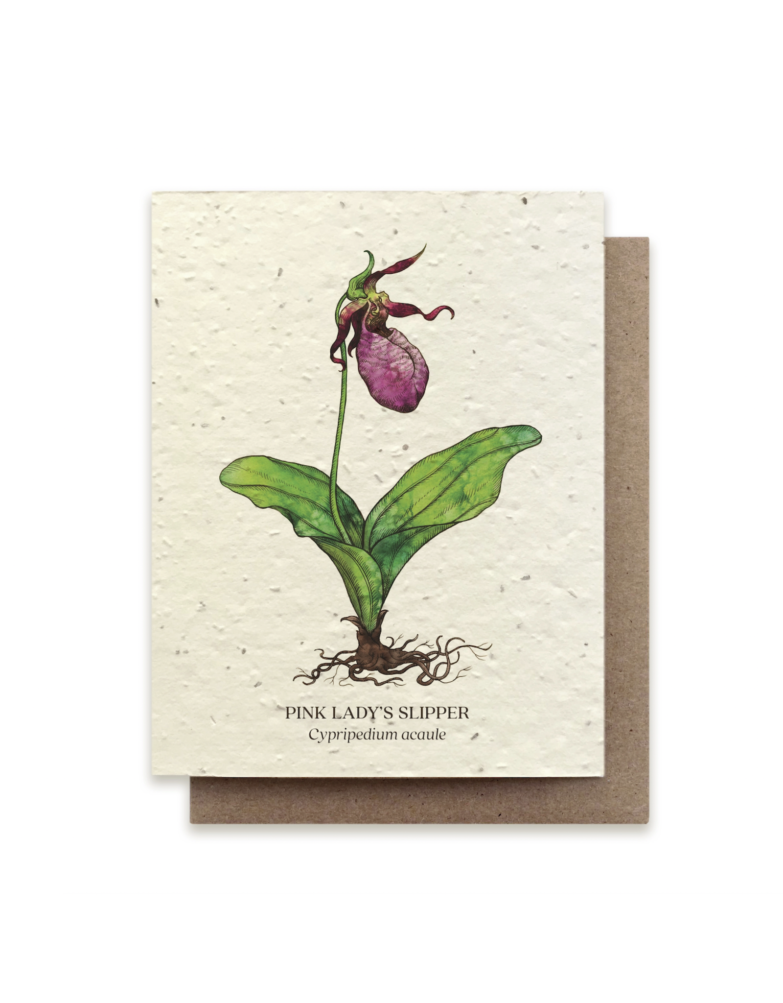 The Bower Studio Lady Slipper Plantable Seed Paper Greeting Card