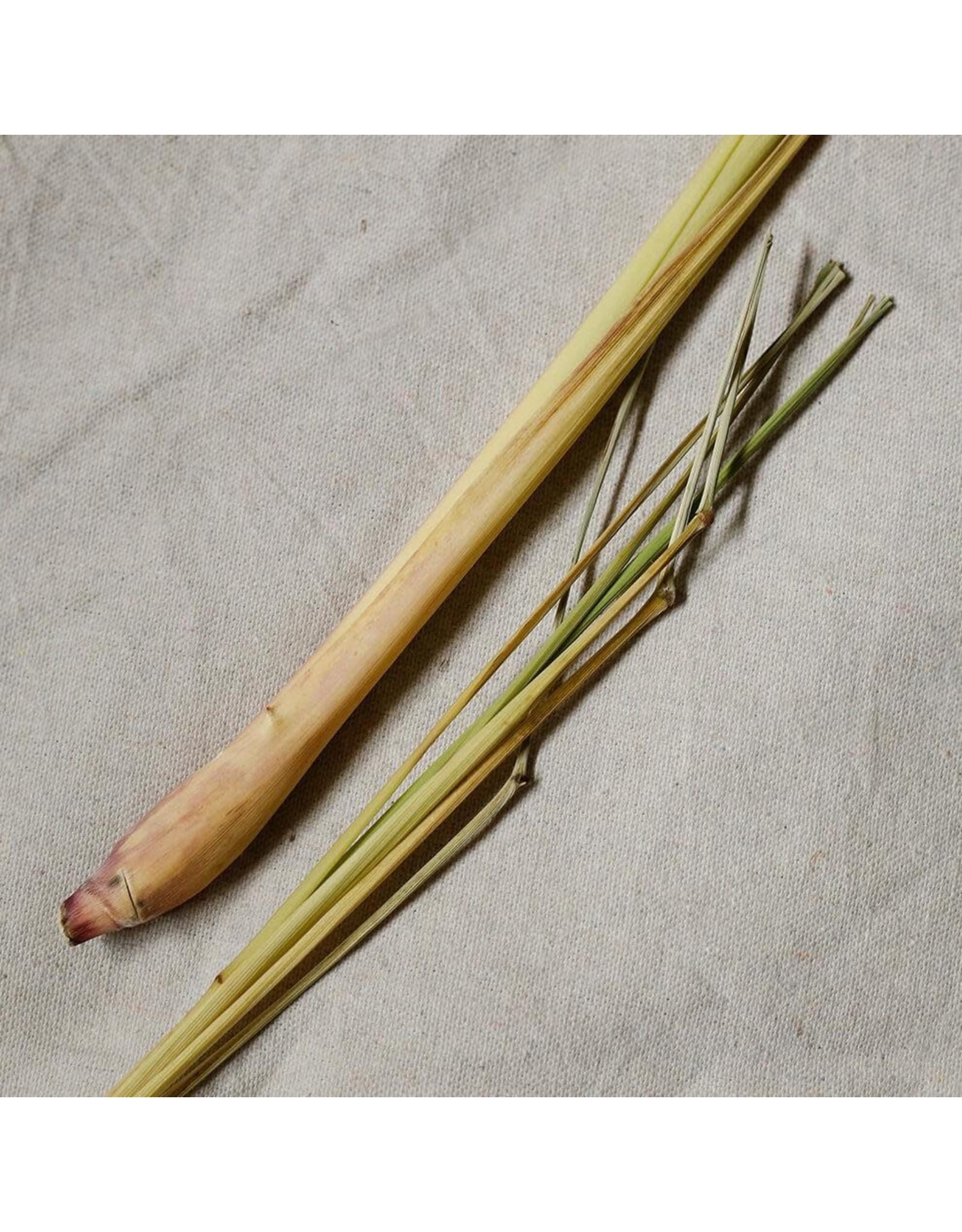 Vitruvi Vitruvi Lemongrass Essential Oil
