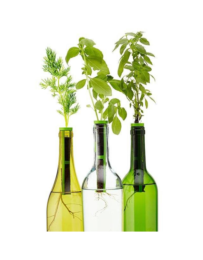 Wine Bottle Window Garden 3 pack Kit